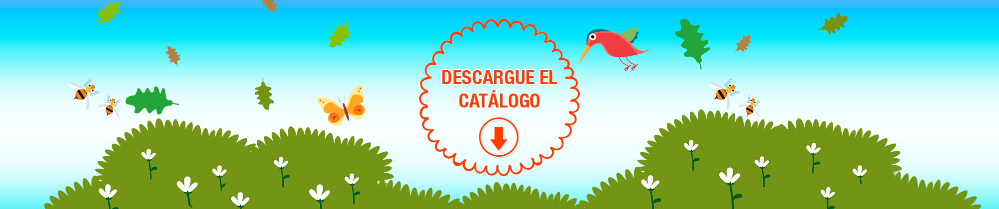 VV Kids Descargue Catálogo