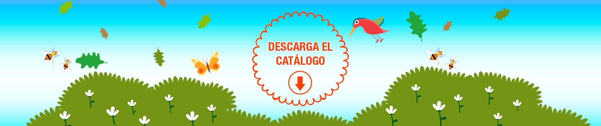 VV Kids Descarga Catálogo